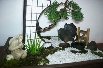 Chinese Bonsai Art